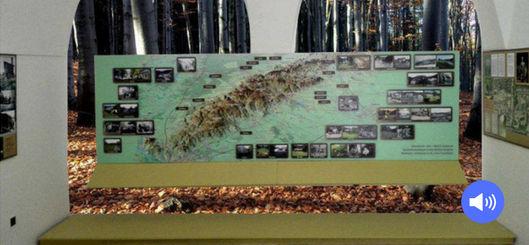 Blick in die Holzhacker-Ausstellung