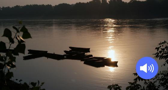 """Die Donau"" von Katarína Fogelová"