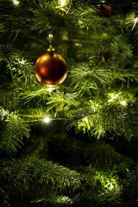 Weihnachten in Neuhau