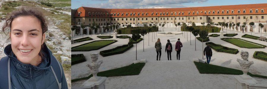 Slowakeiweit: Freiwillige berichten