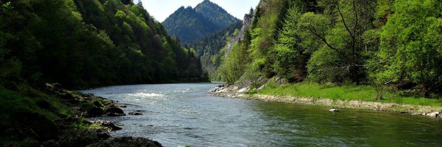 Der Fluß Dunajec