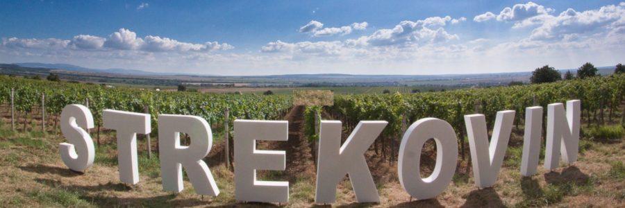 Strekov Weinfest