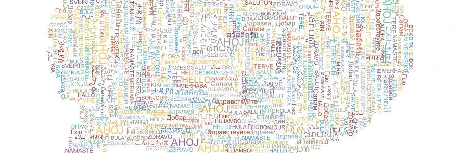 Konferenz über Mehrsprachigkeit und Minderheitensprachen