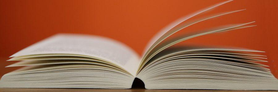 Literaturkränzchen in Einsiedel