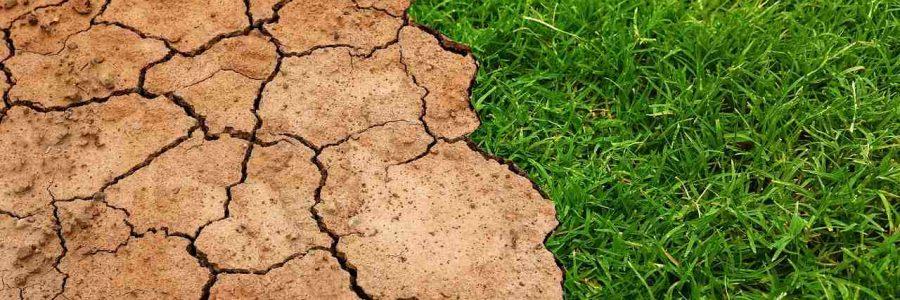 Klimagerechte Zukunft