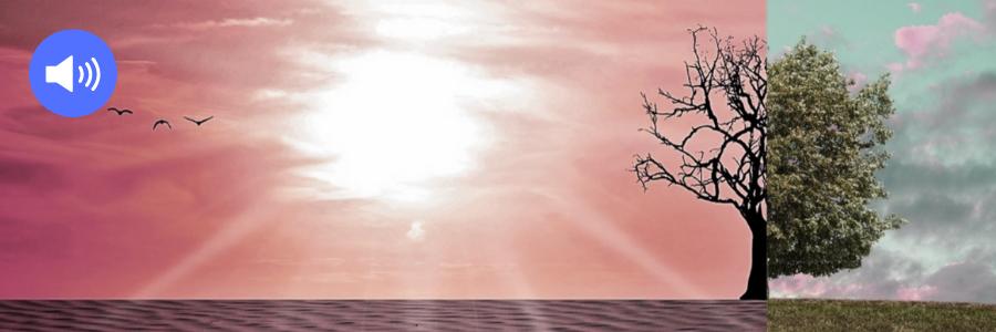 Das Klima im Wandel
